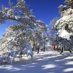Winterimpressionen am Raichberg