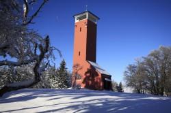 Winter am Raichberg, Januar 2015
